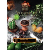 Табак ELEMENT Земля Cactus Fig (Кактусовый финик) 200 грамм