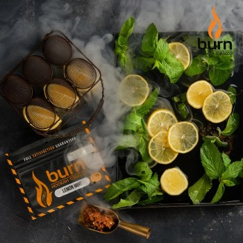Табак Burn Lemon Mint (Лимон мята) 100 грамм